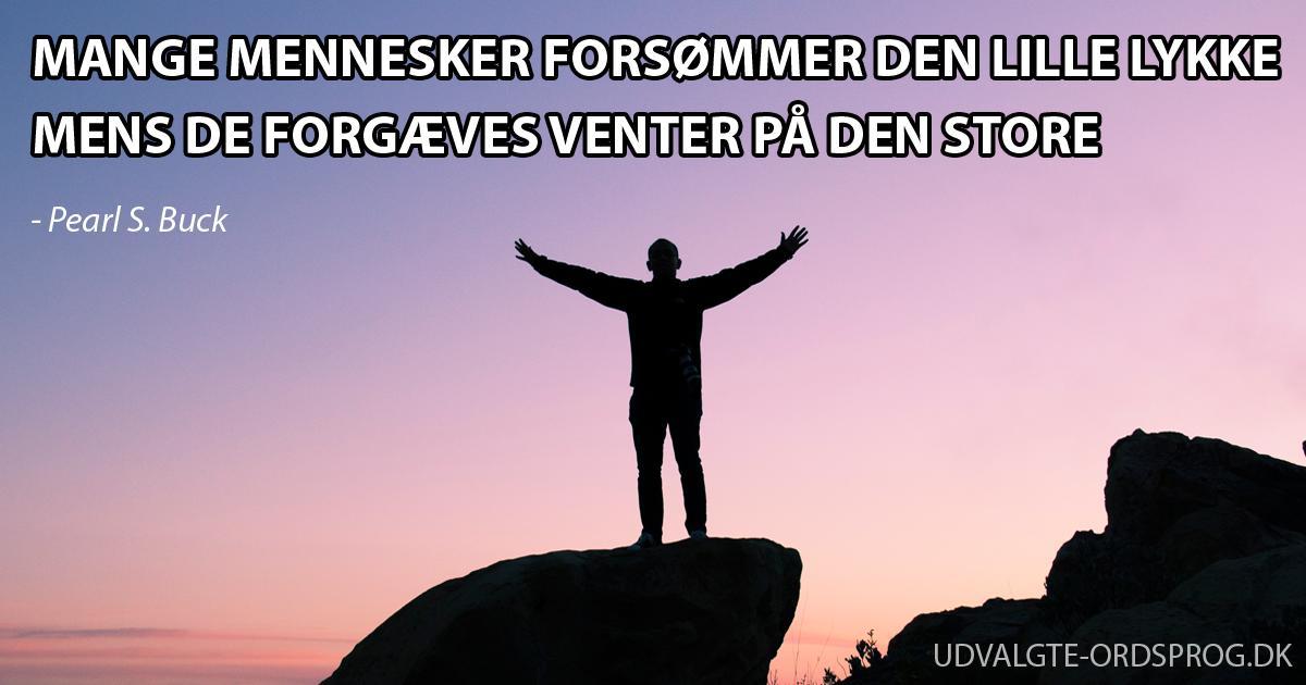 citater ordsprog kærlighed LATINSKE ORDSPROG   48 latinske ordsprog oversat til dansk citater ordsprog kærlighed