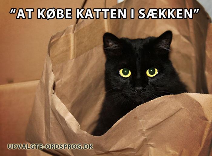 At købe katten i sækken - et dansk udtryk