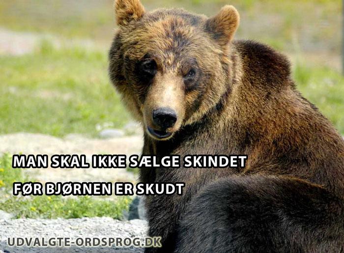 Man skal ikke sælge skindet før bjørnen er skudt - Dansk ordsprog